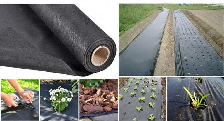 -- Weed control. -- Eco-friendly. -- Harmless, anti-bacterial, UV protection. -- Strong strength and elongation, soft, light weight, non-toxic. -- Excellent property of air through.