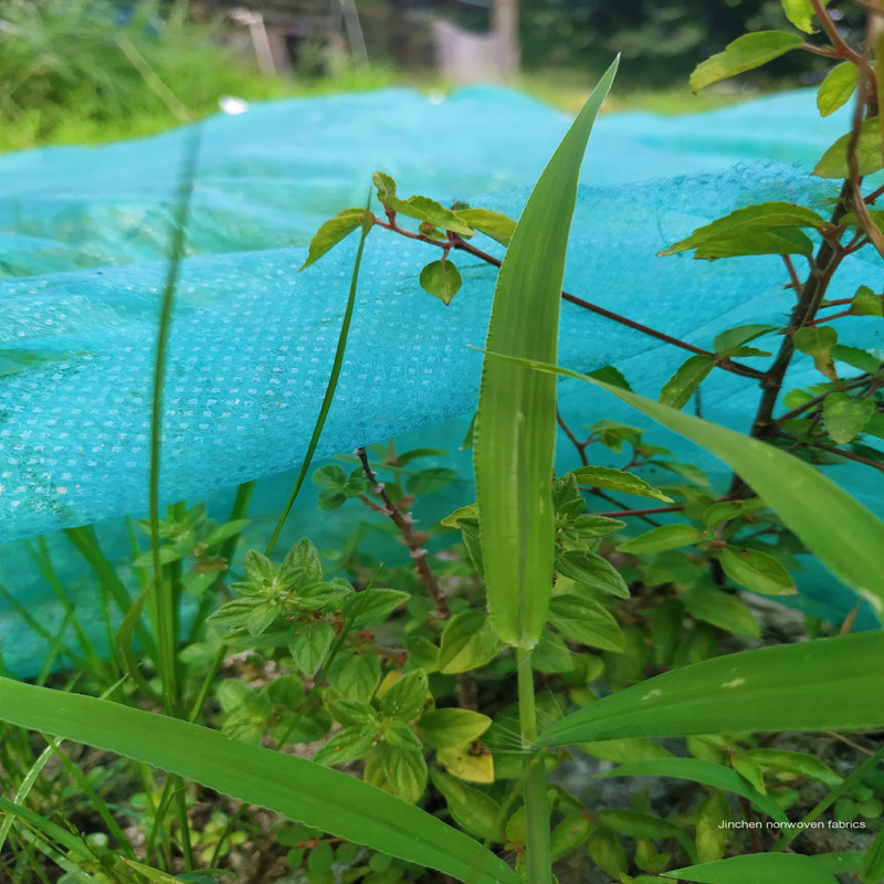 Jinchen spunbond nonwoven fabric fruit cover for greenhouse-2