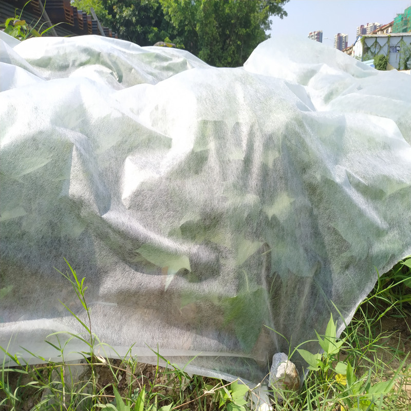 Jinchen latest spunbond nonwoven forest protection for garden-1