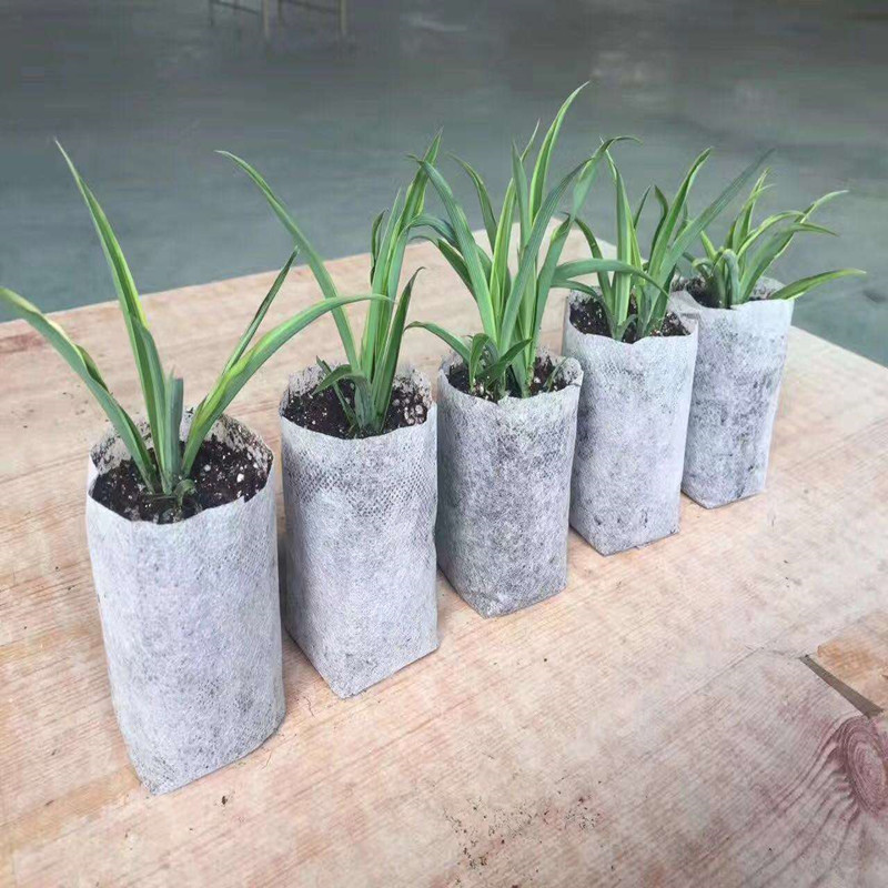 top agricultural fabric suppliers ground treated for greenhouse-1