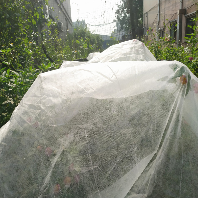 best agricultural fabric ground treated for greenhouse-2