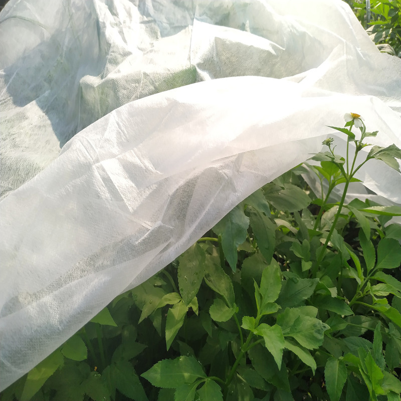 PP Spunbond Nonwoven Fabric for Agriculture Covering
