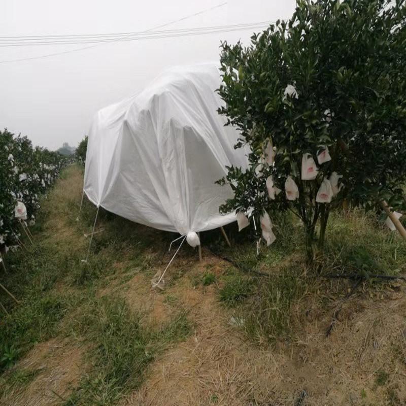 Jinchen best agricultural fabric landscape for garden-1