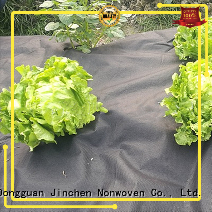 high quality agricultural fabric forest protection for greenhouse