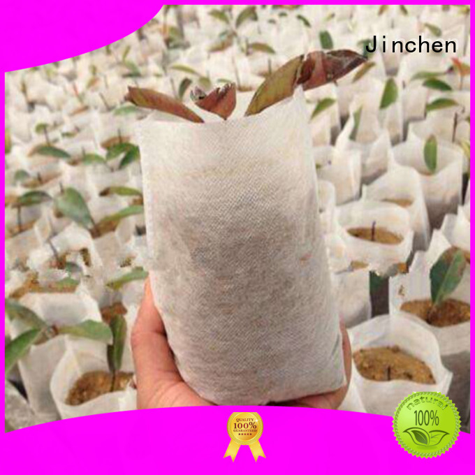 seedling non plastic bags with customized logo for supermarket