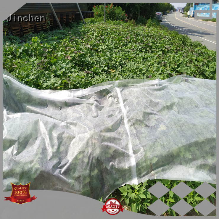 Jinchen top agricultural cloth fruit cover for garden