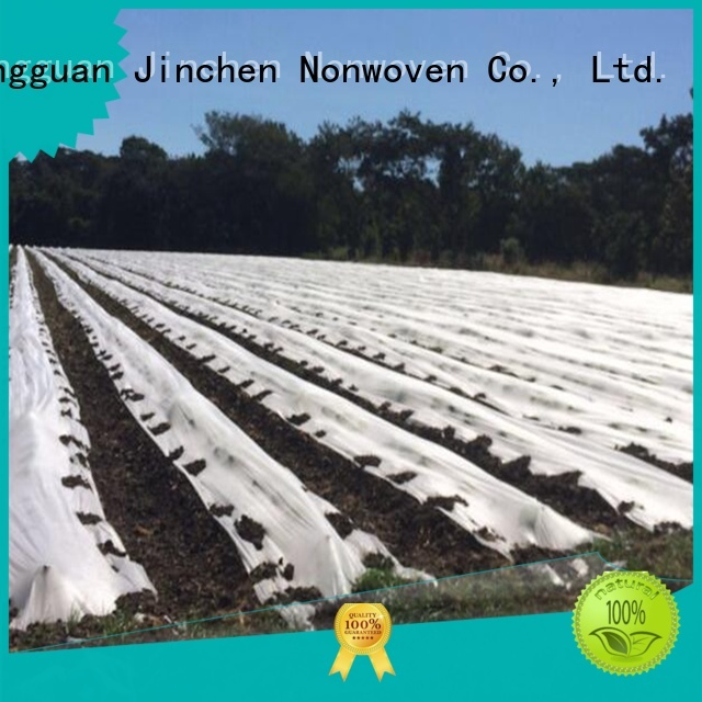 Jinchen spunbond nonwoven fruit cover for tree