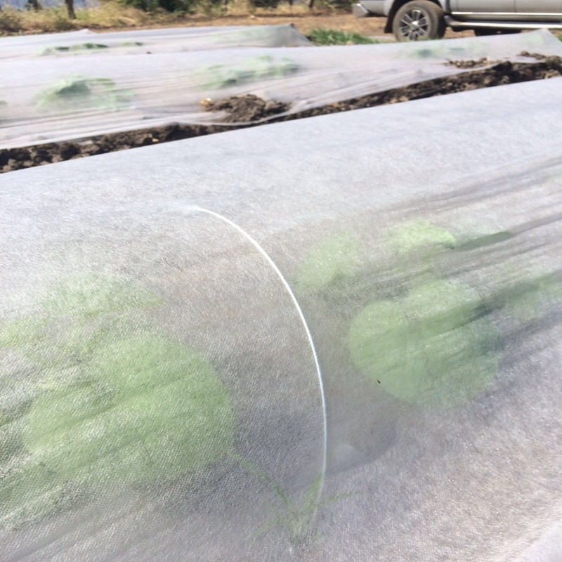 Ultra-width UV Non woven for agricultural covering