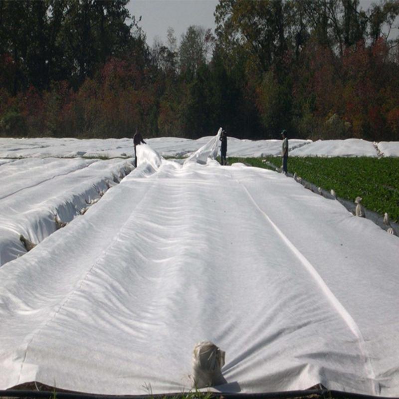 anti uv spunbond nonwoven fabric landscape for tree-2