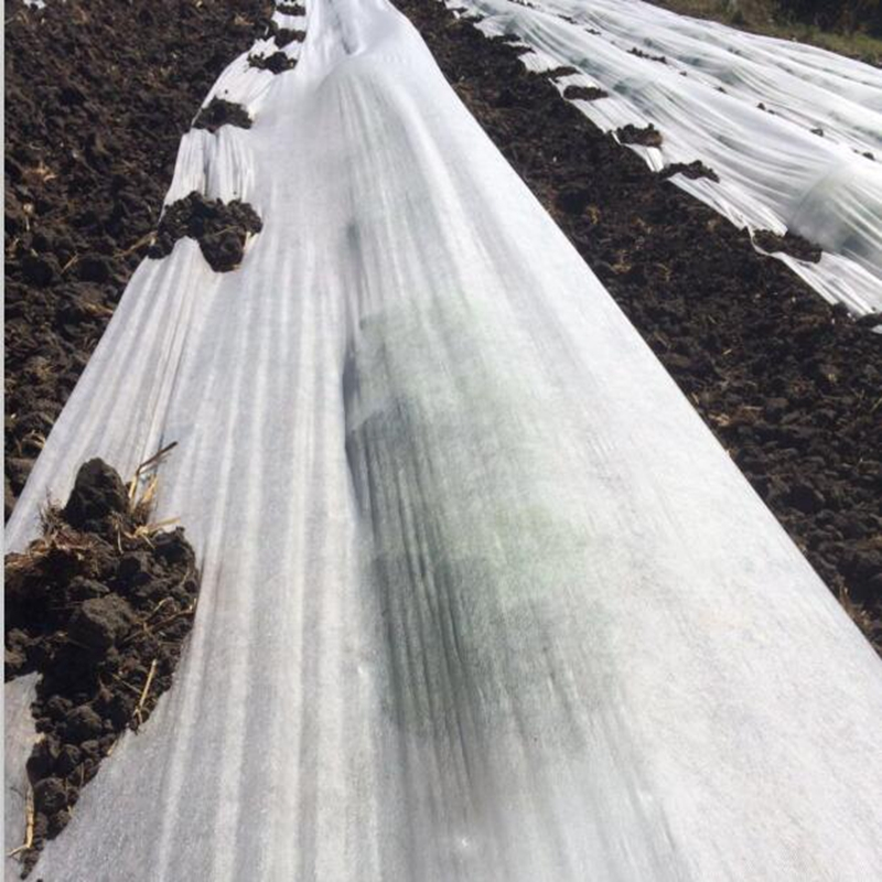 Jinchen agricultural fabric suppliers ground treated for garden-2