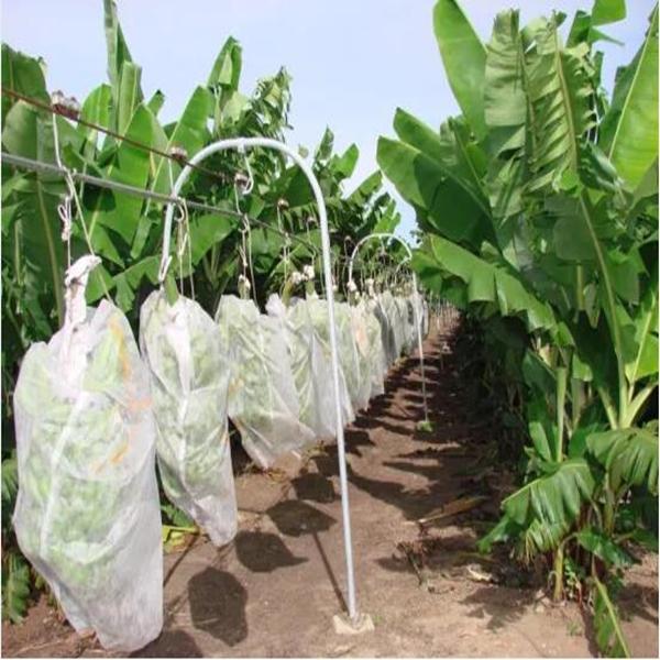 Jinchen non woven fabric bags supplier for supermarket-2