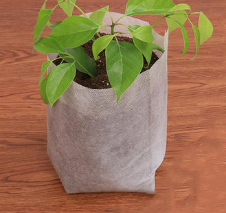 Non-woven seedling bag for disposable usage
