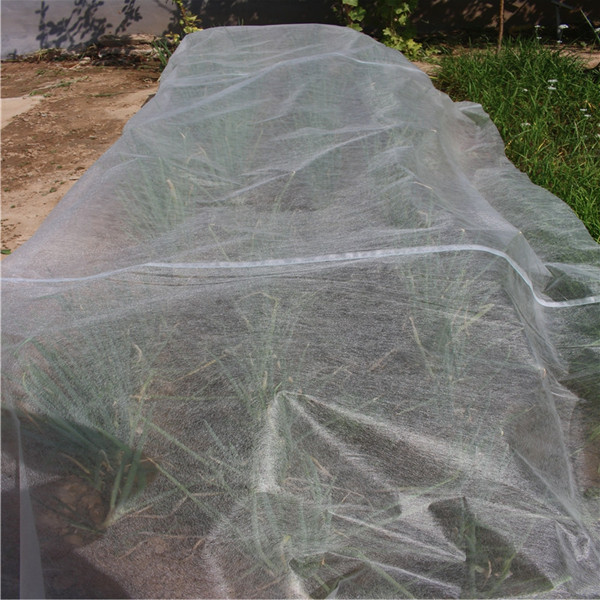 Jinchen wholesale agricultural cloth forest protection for tree-1