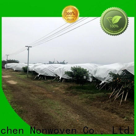 Jinchen new agricultural fabric fruit cover for garden