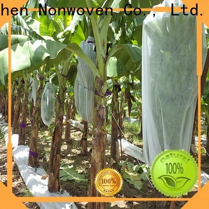 Jinchen new non woven cloth for sale