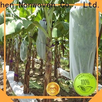 Jinchen new non woven cloth for sale