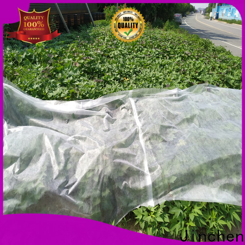 Jinchen custom agricultural fabric suppliers ground treated for tree