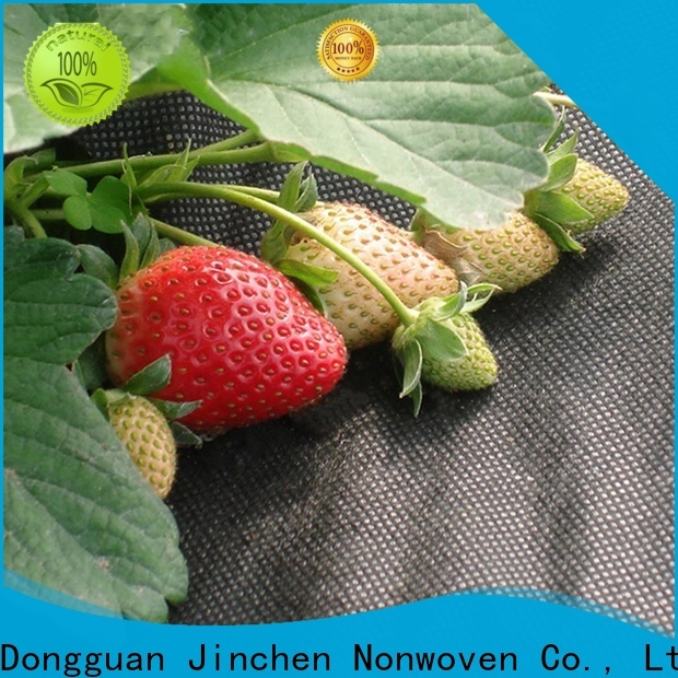 Jinchen agricultural fabric forest protection for greenhouse