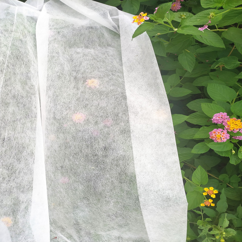 Agriculture PP Nonwoven Fabric ultra-width anti UV large width