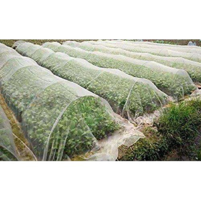 Agricultural pp non woven fabric for covering