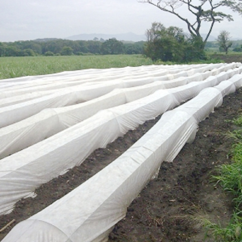 The agricultural non-woven fabric covers for weeding and cold protection