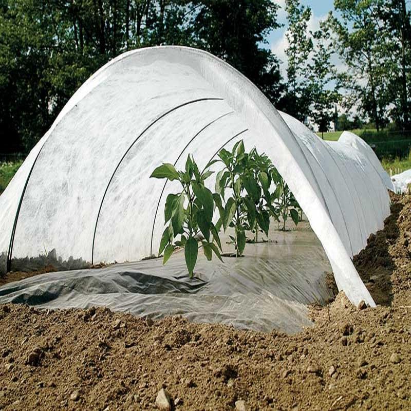Jinchen wholesale spunbond nonwoven supplier for greenhouse-2