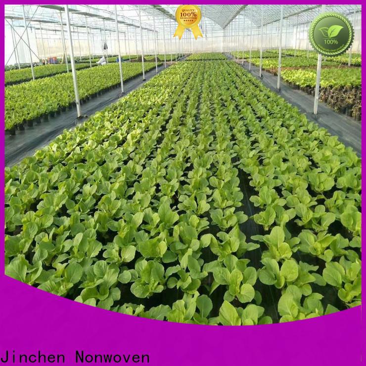 Jinchen agriculture non woven fabric awarded supplier for garden