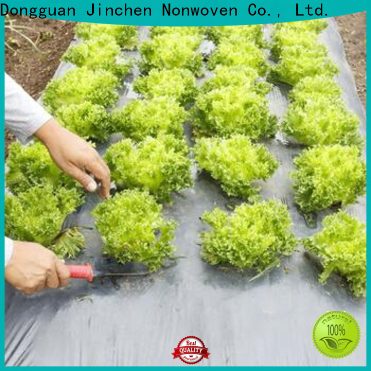 Jinchen professional agricultural fabric manufacturer for garden