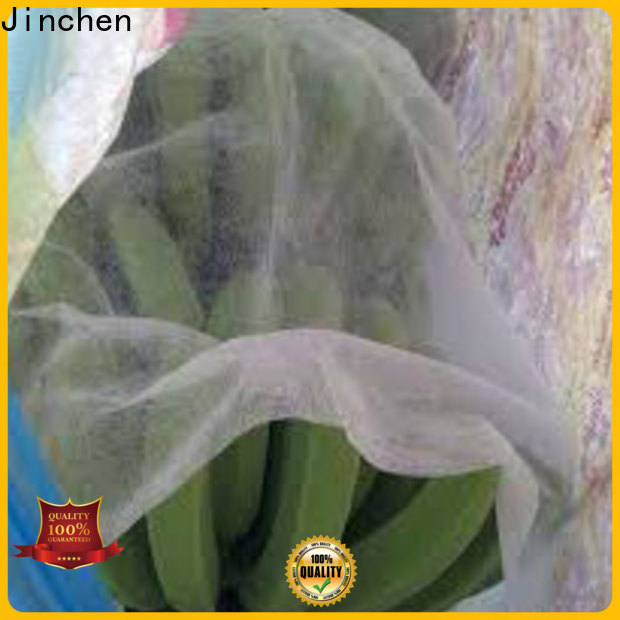 high-quality fruit protection bags supplier fpr fruit protection