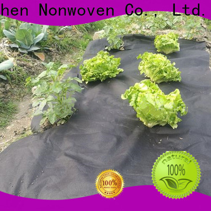 Jinchen agricultural cloth solution expert for tree