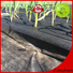 Jinchen best agriculture non woven fabric manufacturer for tree