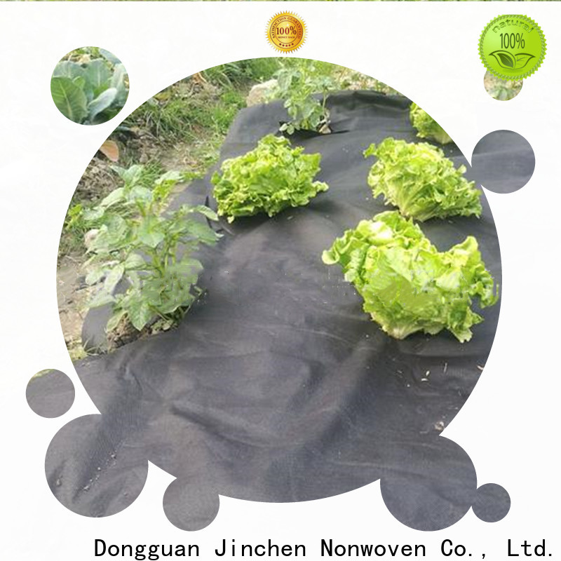 Jinchen custom agricultural fabric suppliers trader for tree