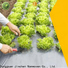 top agriculture non woven fabric spot seller for greenhouse