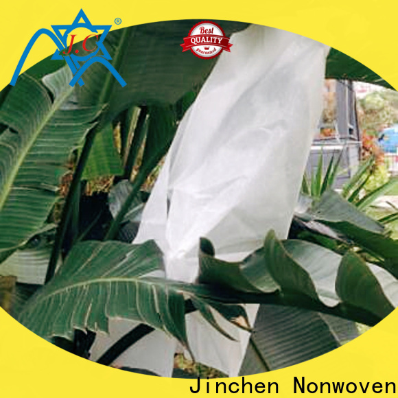 Jinchen fruit protection bags supplier for tree