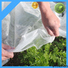 latest agriculture non woven fabric factory for garden