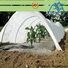 Jinchen agricultural cloth wholesale for garden