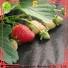 Jinchen best agricultural fabric exporter for garden