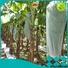 wholesale fruit cover bag manufacturer for sale