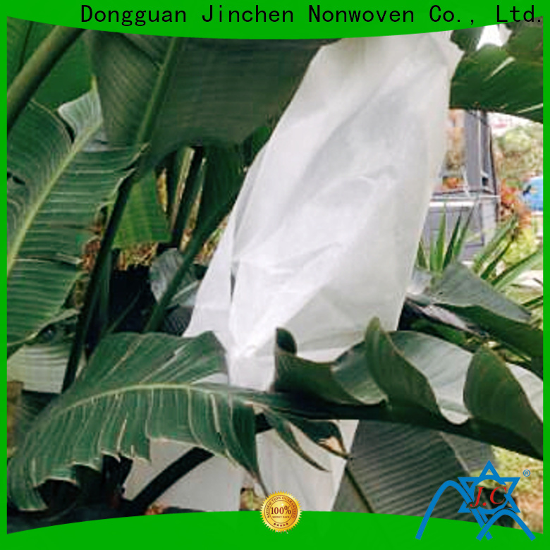 Jinchen non woven cloth timeless design for tree