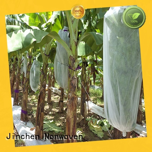 Jinchen fruit tree protection company fpr fruit protection