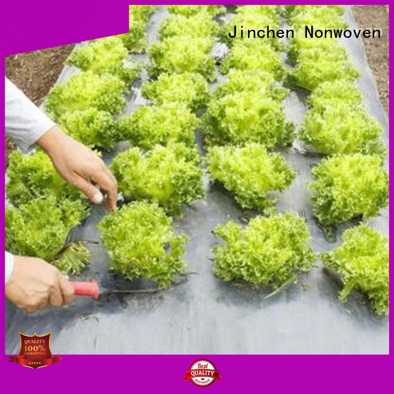 Jinchen high quality agriculture non woven fabric forest protection for garden