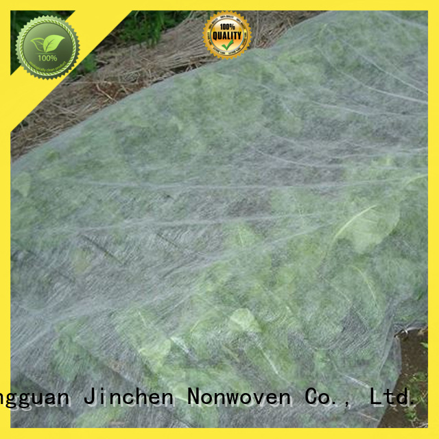 professional agricultural cloth ground treated for tree