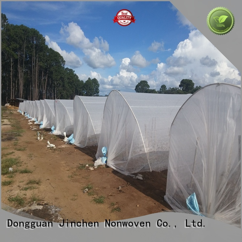 Jinchen agricultural fabric fruit cover for tree