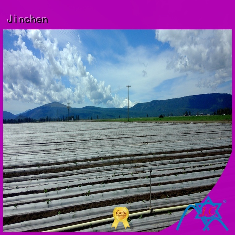 Jinchen professional agricultural fabric landscape for tree