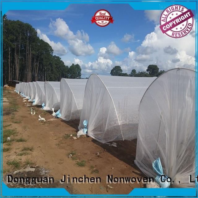 Jinchen ultra width non woven sheet for tree