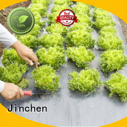 Jinchen agricultural fabric ground treated for tree