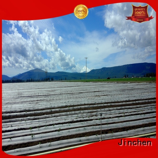 mulch film with customized service for agriculture