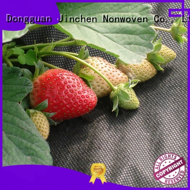 ultra width agricultural fabric suppliers fruit cover for tree