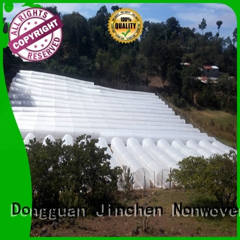 Jinchen anti uv spunbond nonwoven fabric forest protection for garden