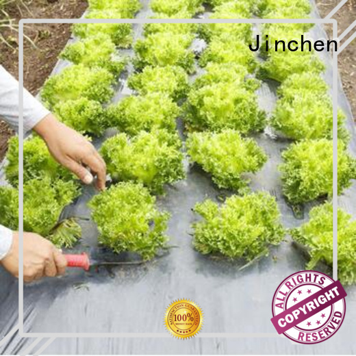 Jinchen agricultural cloth ground treated for garden